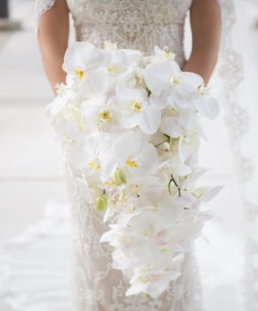 Bridal bouquet of cascading white phalaenopsis orchids.