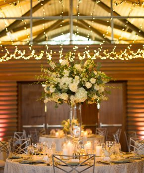 Twinkle lights with tall all white flower centerpiece for indoor reception.