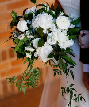 Organic all white fall bouquet- white peony, white ranunculus,with cascading jasmine vine.
